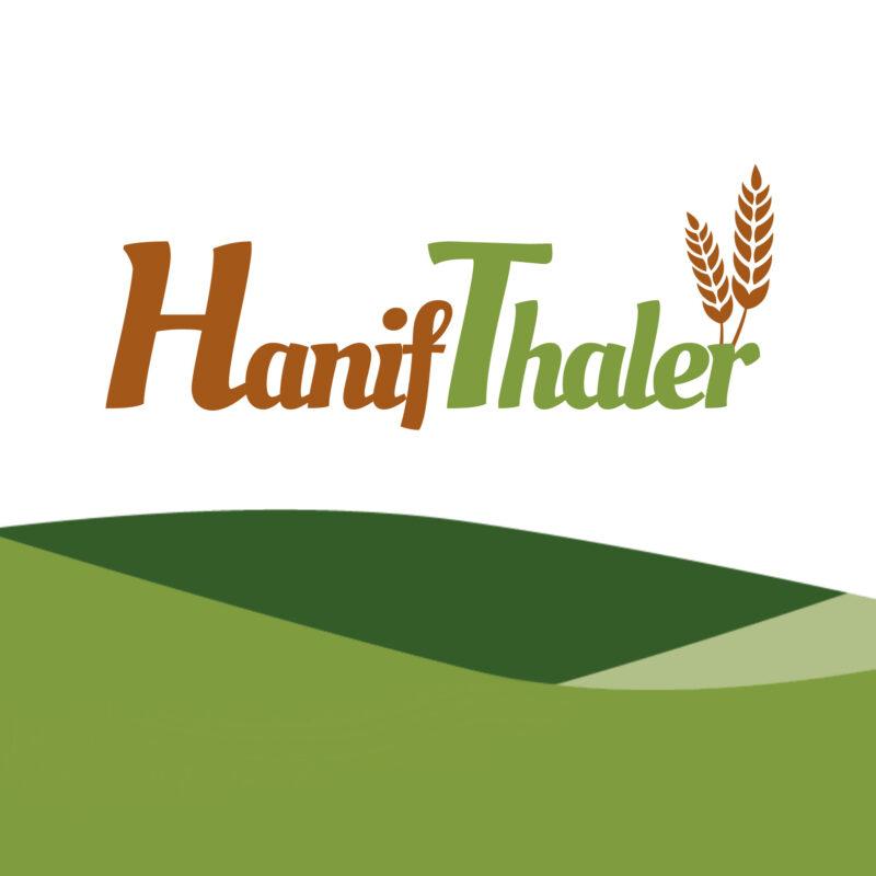 Einsigartig Logo Hanifthaler